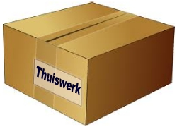 BIJVERDIENEN - Werk van Thuis uit!